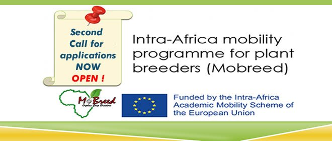 MoBreed (Mobility for Breeders in Africa) Masters & PhD Scholarships
