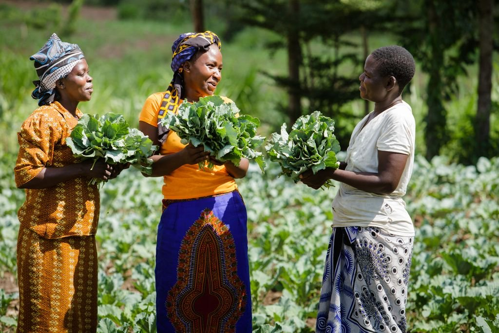 USAID Accelerating Women Entrepreneurs Prize