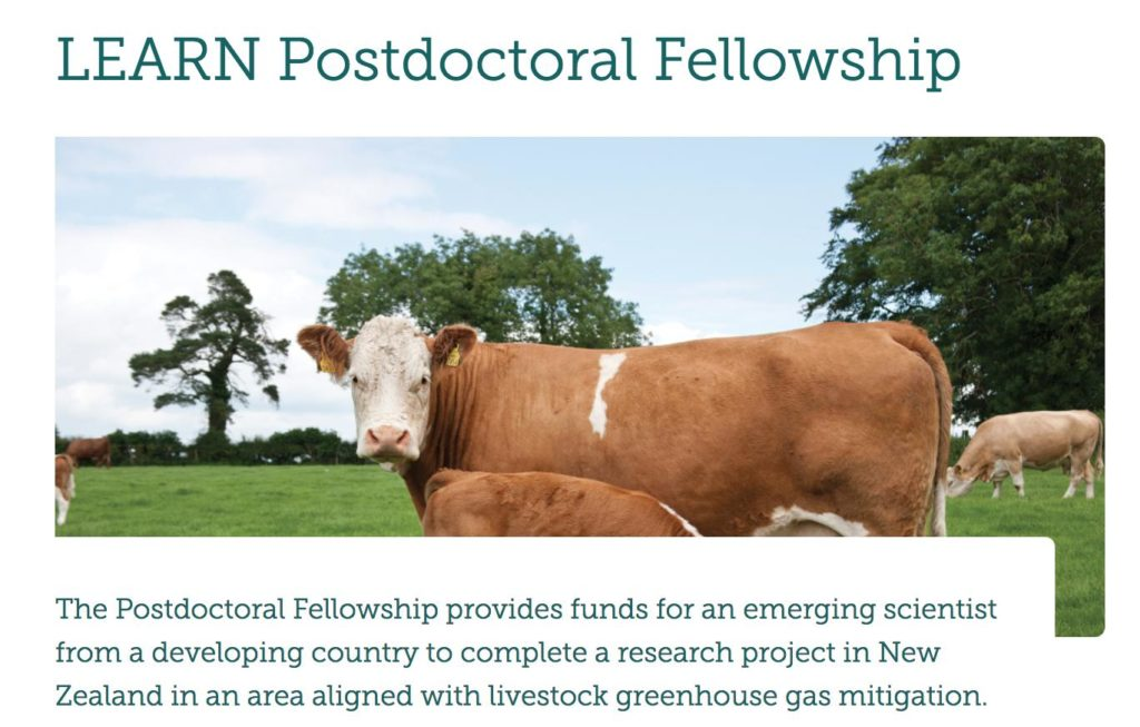 LEARN Postdoctoral Fellowship