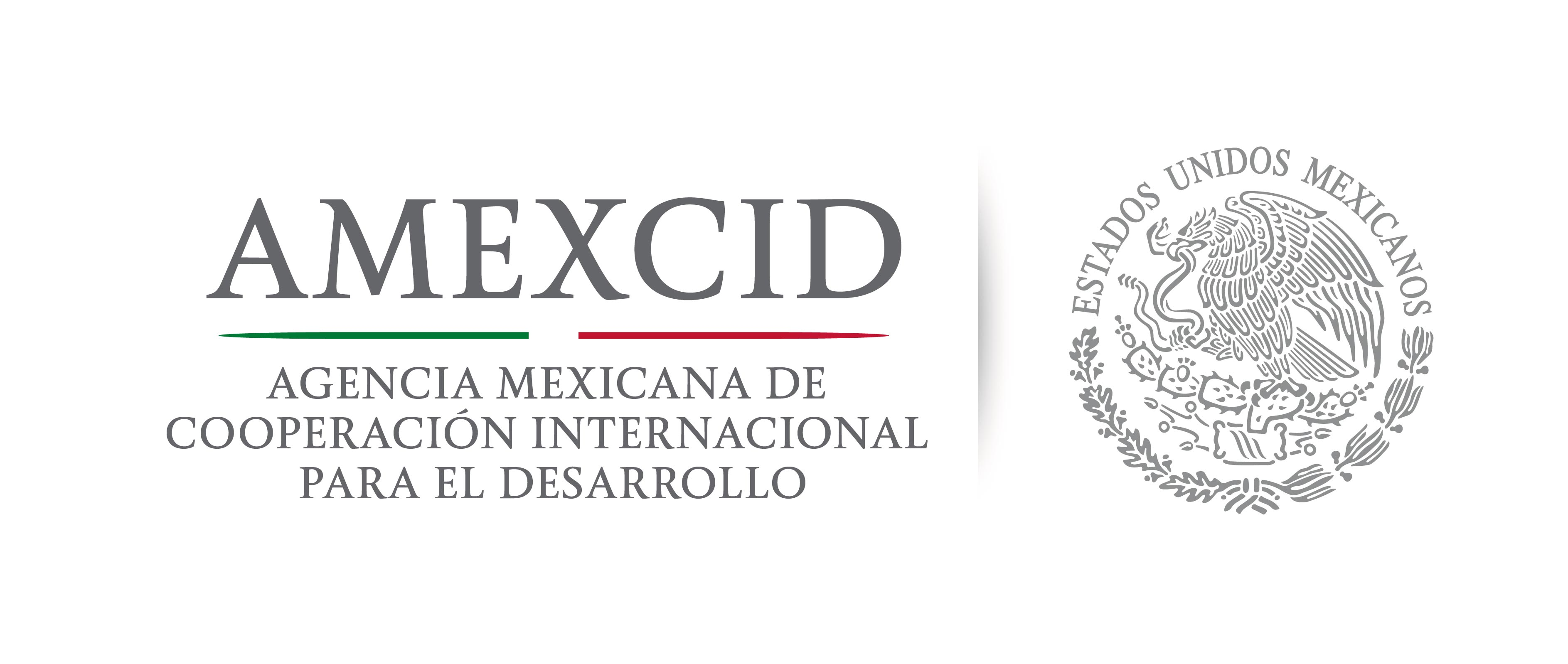 Mexican Government Scholarship