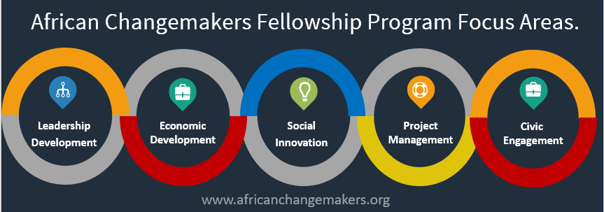African ChangeMakers Fellowship Program focus area