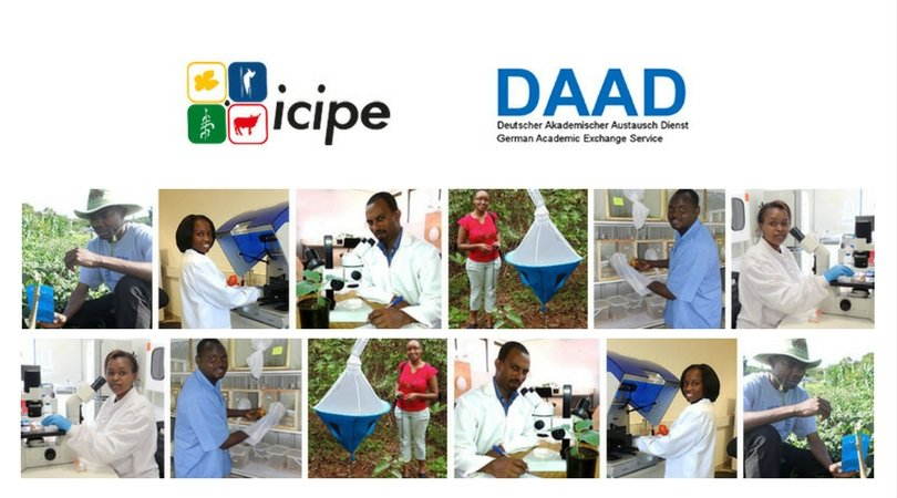 ARPPIS-DAAD PhD Scholarships