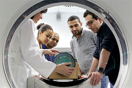 International Centre for Theoritical Physics (ICTP) Master in Medical Physics Programme