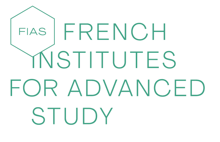 French Institutes for Advanced Study Fellowship Programme