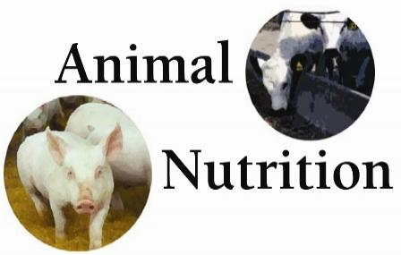 JAMB Subject Combinations for Animal Nutrition