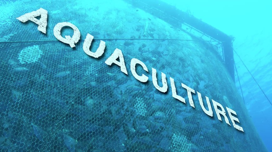 JAMB Subject Combination for Aquaculture and Fisheries Management
