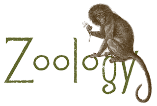 JAMB Subject Combination for Applied Zoology
