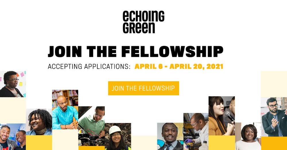 Echoing Green Fellowship 2021